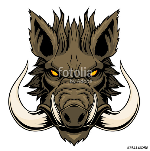 graphic royalty free download Boar vector wild. Head mascot stock image