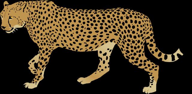 clip art free library Cheetah clipart face. Cartoon free on dumielauxepices.