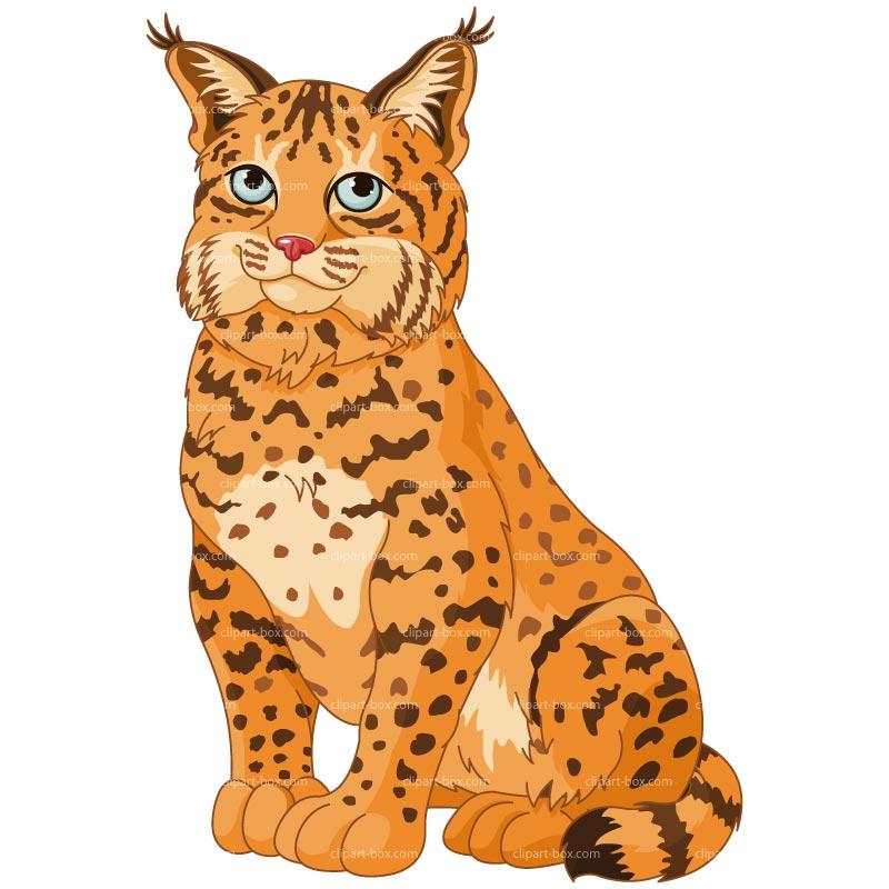 clip royalty free download Bobcat clipart clip art. Free cliparts download