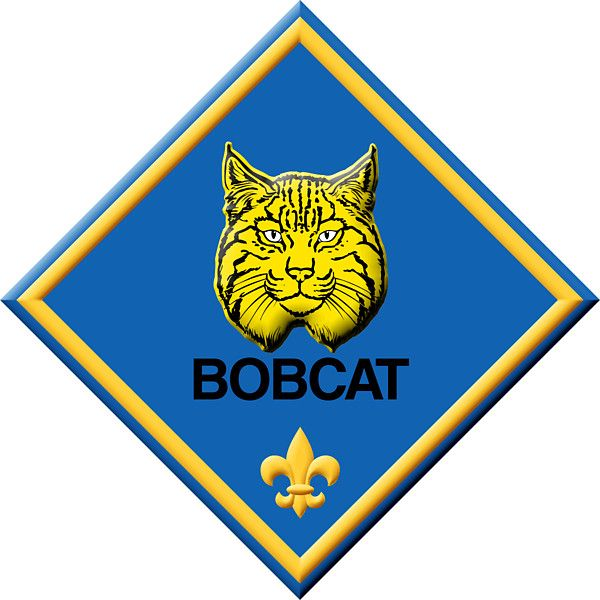 svg transparent library Bobcat clipart cub scout. Pin on tiger scouts