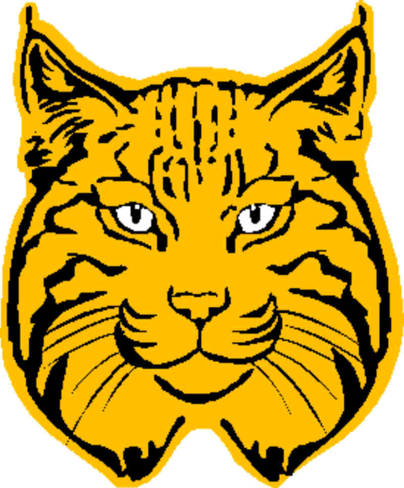 svg royalty free stock Clip art free image. Bobcat clipart cub scout