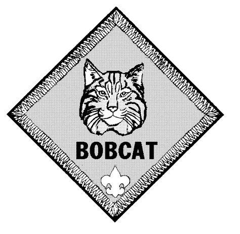 clip art transparent Pinterest . Bobcat clipart cub scout