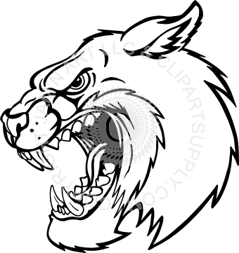 picture freeuse stock Bobcat clipart face. Drawing at getdrawings com