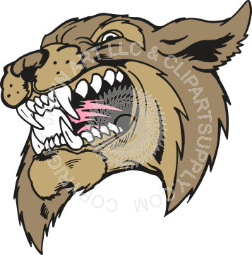 vector library download Bobcat head showing teeth in color