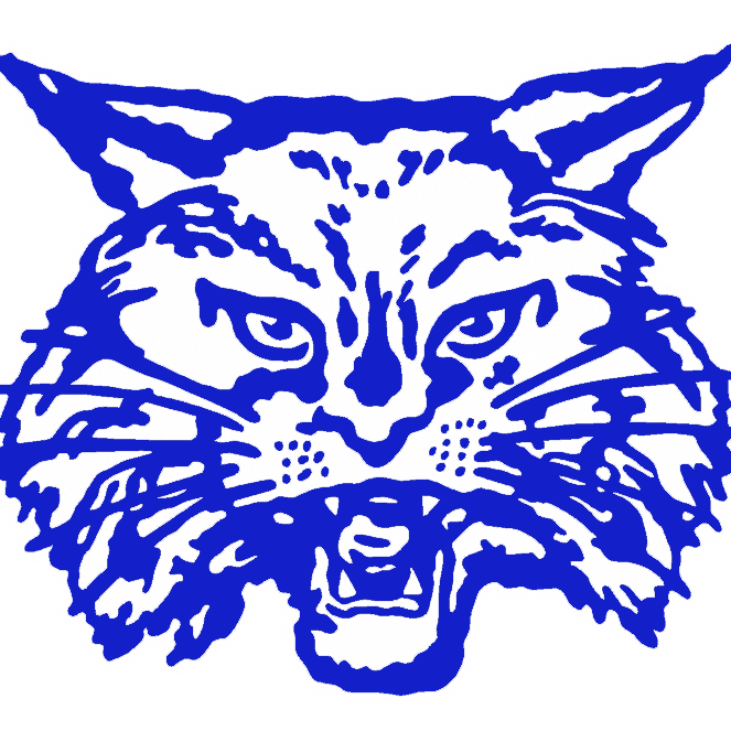 vector library download Childress Bobcats
