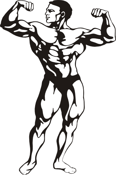 image free Body Builder Clip Art at Clker
