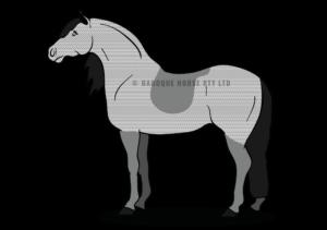 clipart transparent download Bib clip trace. Horse clipping hunter diagram