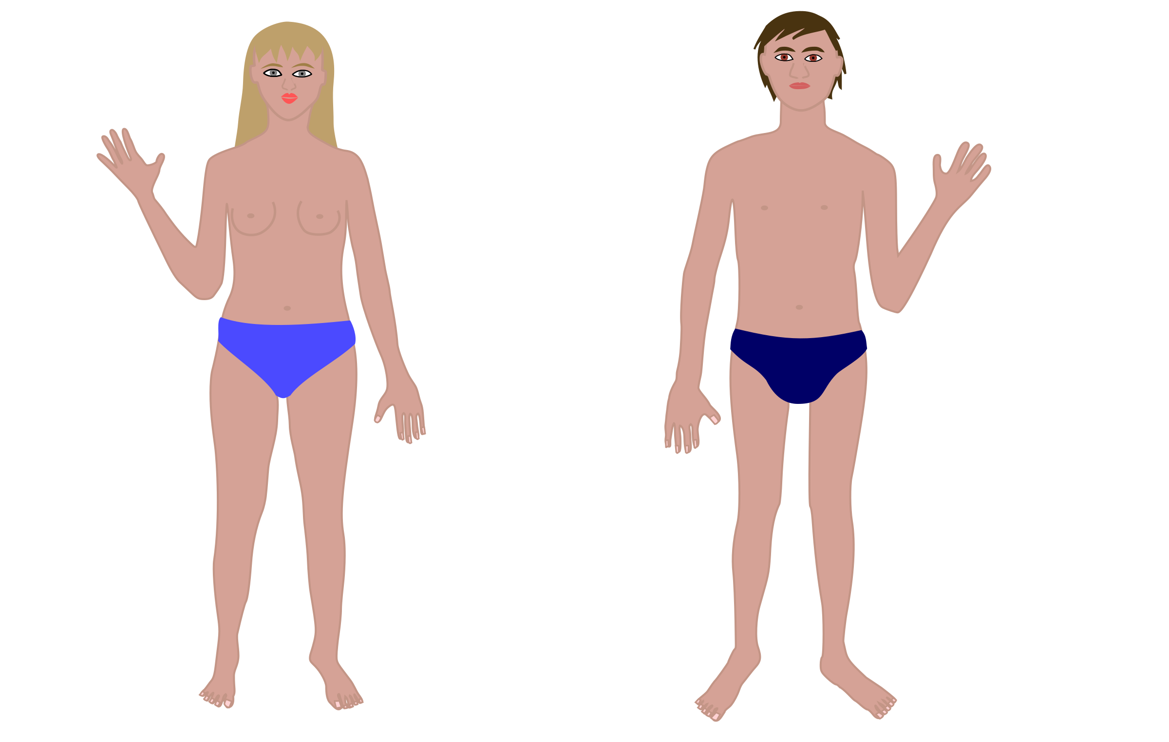 svg library library Human man and woman. Body clipart swimsuit.