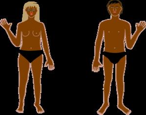 banner download Human b clip art. Body clipart swimsuit.