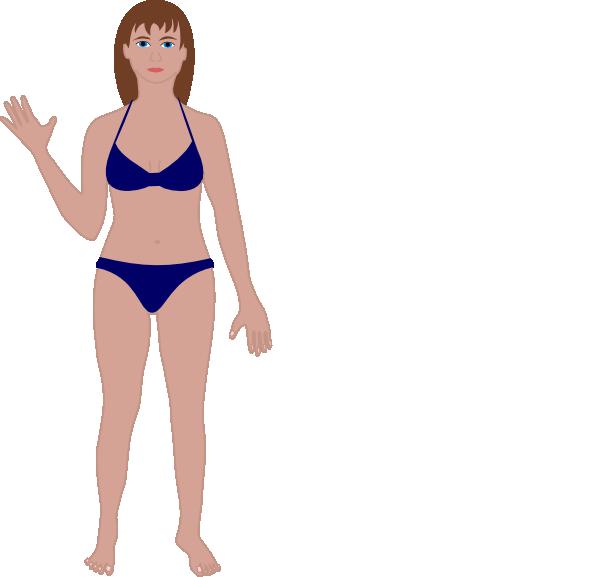 clip art stock Female human clip art. Body clipart swimsuit.