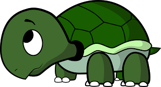 image download Body clipart turtle. How to draw a