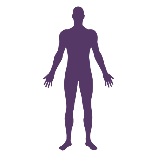 banner stock Male body medical pose