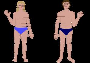 clipart library library Cartoon body parts clip. Vector cartoons human