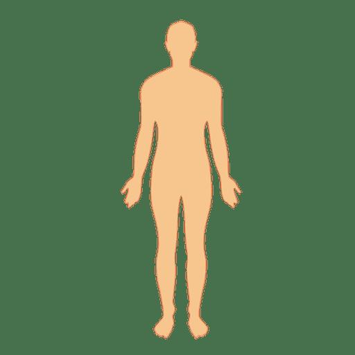 banner royalty free Human body man