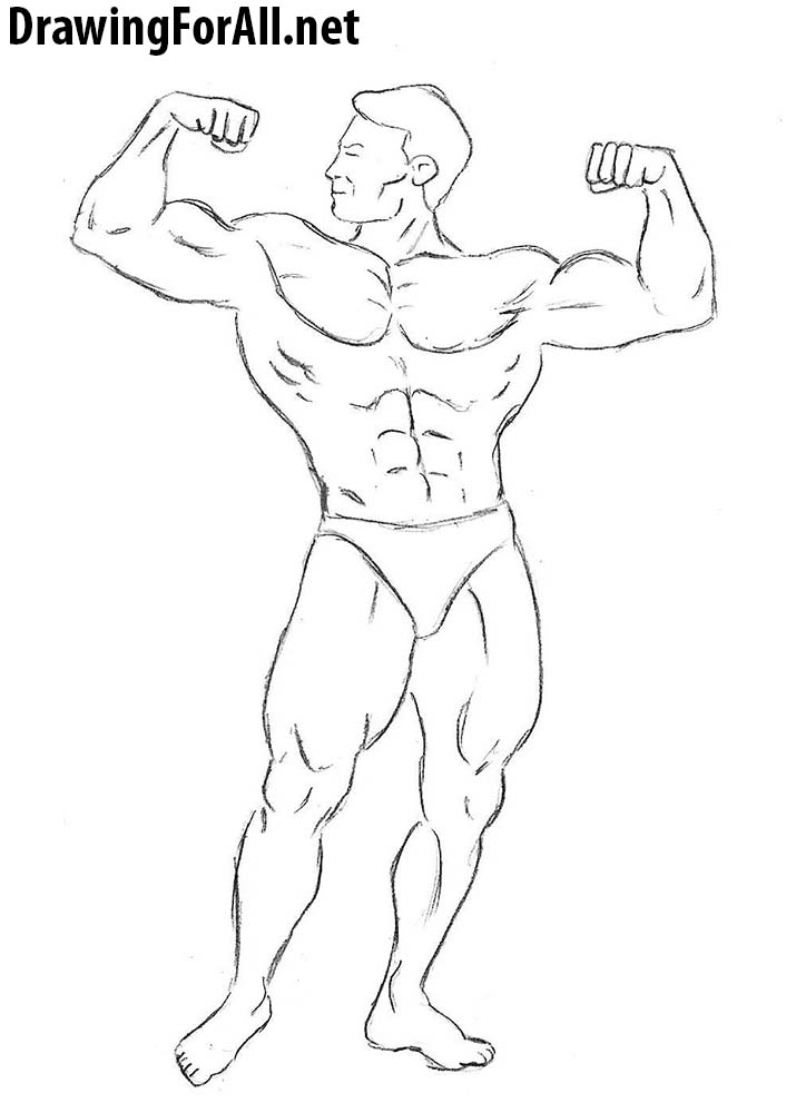 banner free download Bicep drawing bodybuilding. How to draw a