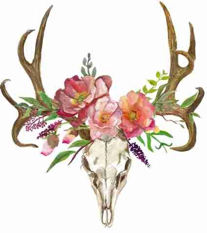 picture freeuse library Bohemian art skull with. Boho clipart deer.