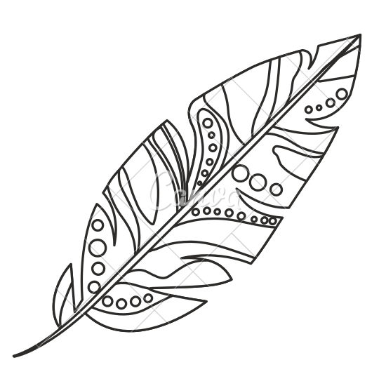 graphic transparent library Boho clipart feather. Drawn free on dumielauxepices