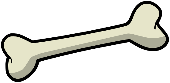 png free download Bone transparent. Drawing png stickpng