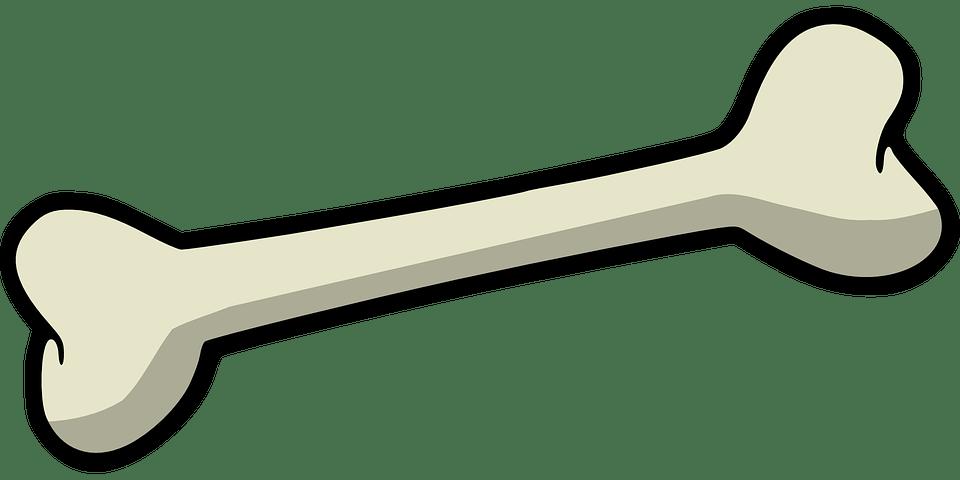 banner royalty free Bones transparent simple.  solutions to bone