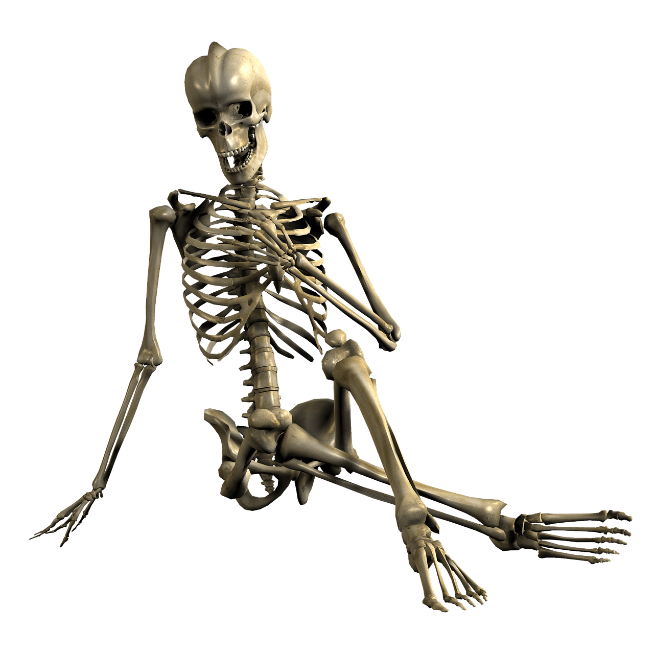 graphic black and white stock Hand in front of. Bone transparent skeleton
