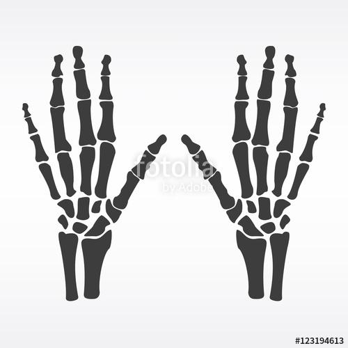 clip art black and white Human hands stock image. Bones vector arm bone