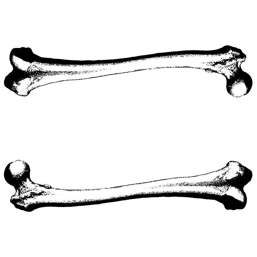 clipart free download Bones vector black and white. Dog bone clip art