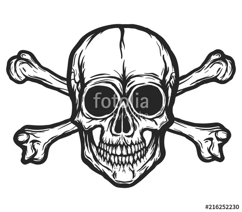 clip art royalty free library Human skull with silhouette. Bones vector black and white