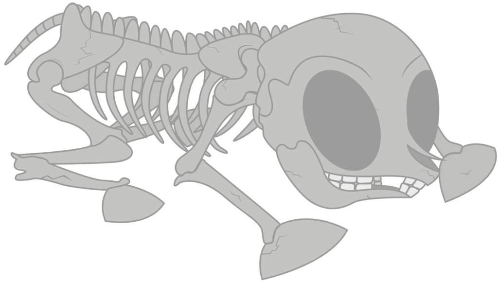clip art freeuse library Bones vector blank. Pony skeleton by boneswolbach