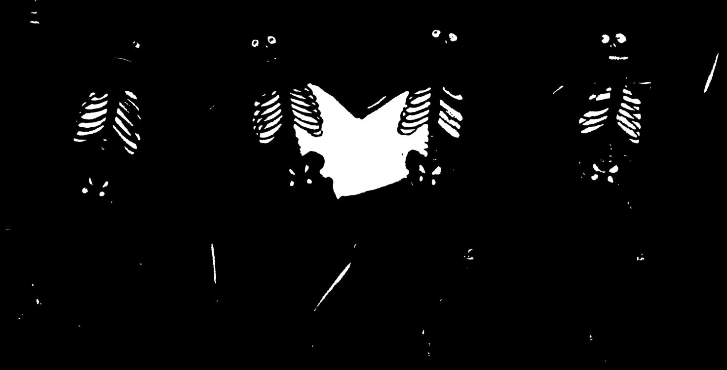 jpg royalty free stock Skeleton skull computer icons. Bones vector human bone