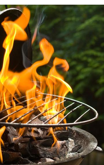clip art download R us meat braairus. Bonfire clipart braai