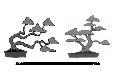 vector freeuse download bonsai drawing bonzai #90437879