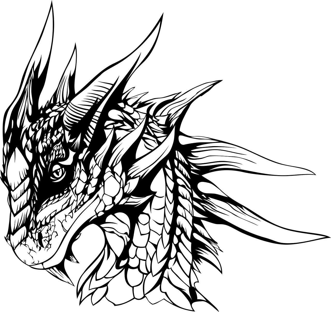 picture black and white stock Drawing Dragon DeviantArt Pencil Sketch
