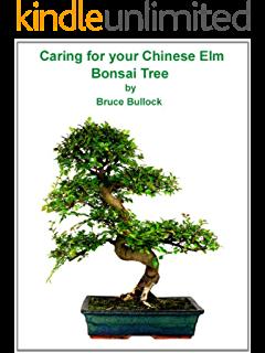 vector library stock Juniper Bonsai Guide eBook