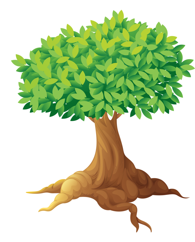 picture royalty free download bonsai drawing old tree root #90673204