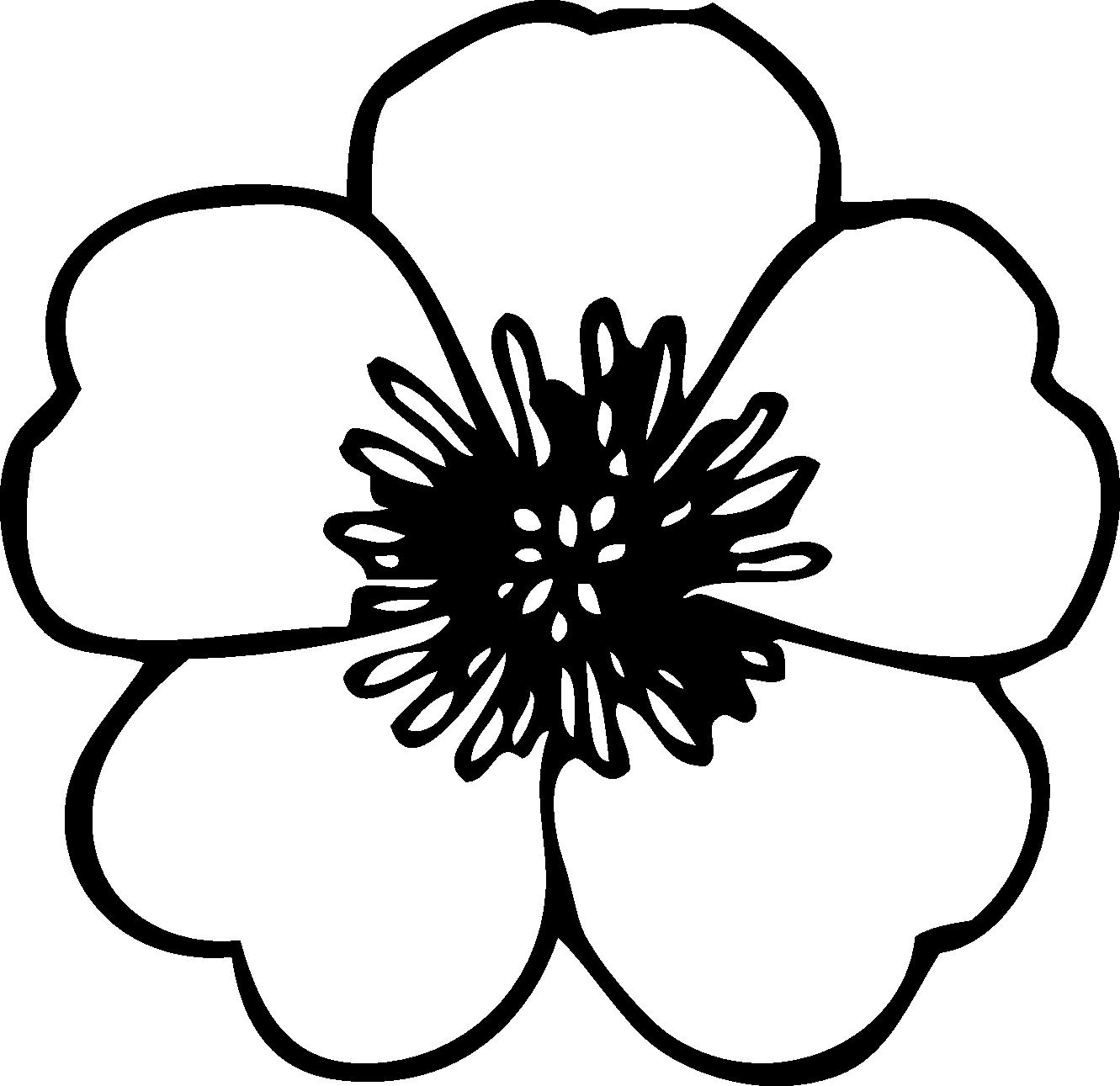 free stock flower black white line
