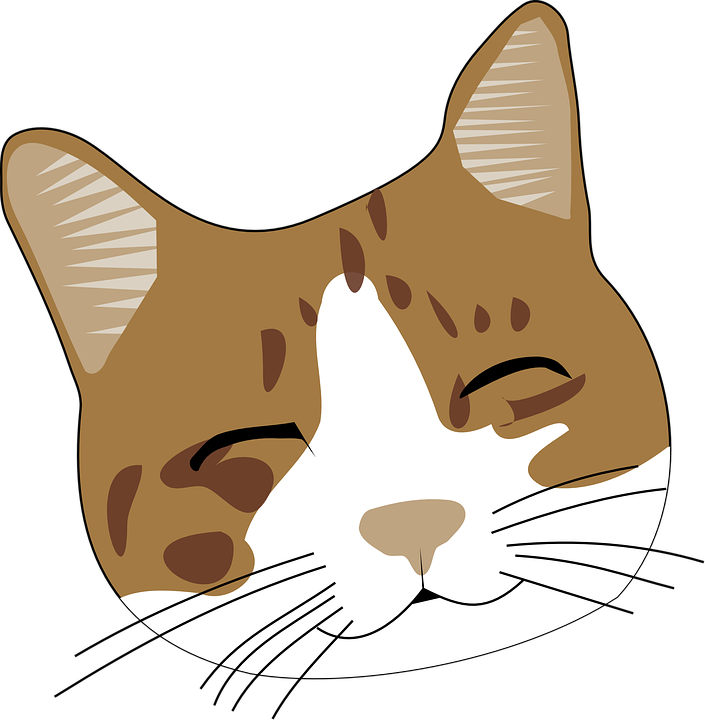 png library library Bored clipart cat. K t qu h.