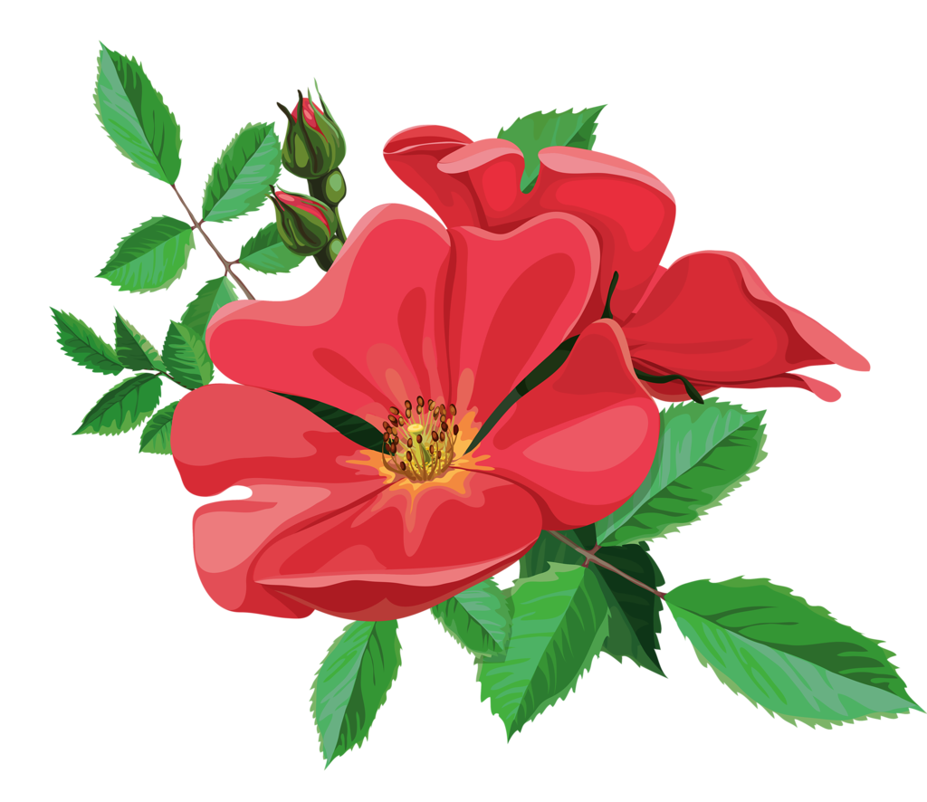 jpg library library  png flowers and. Bouquet clipart animated flower