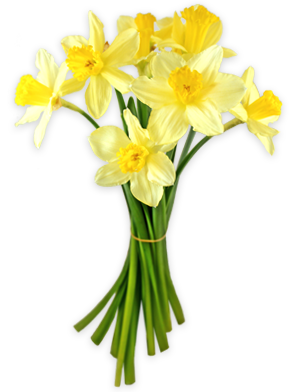 svg royalty free Bouquet clipart daffodils. By lovemayu on deviantart
