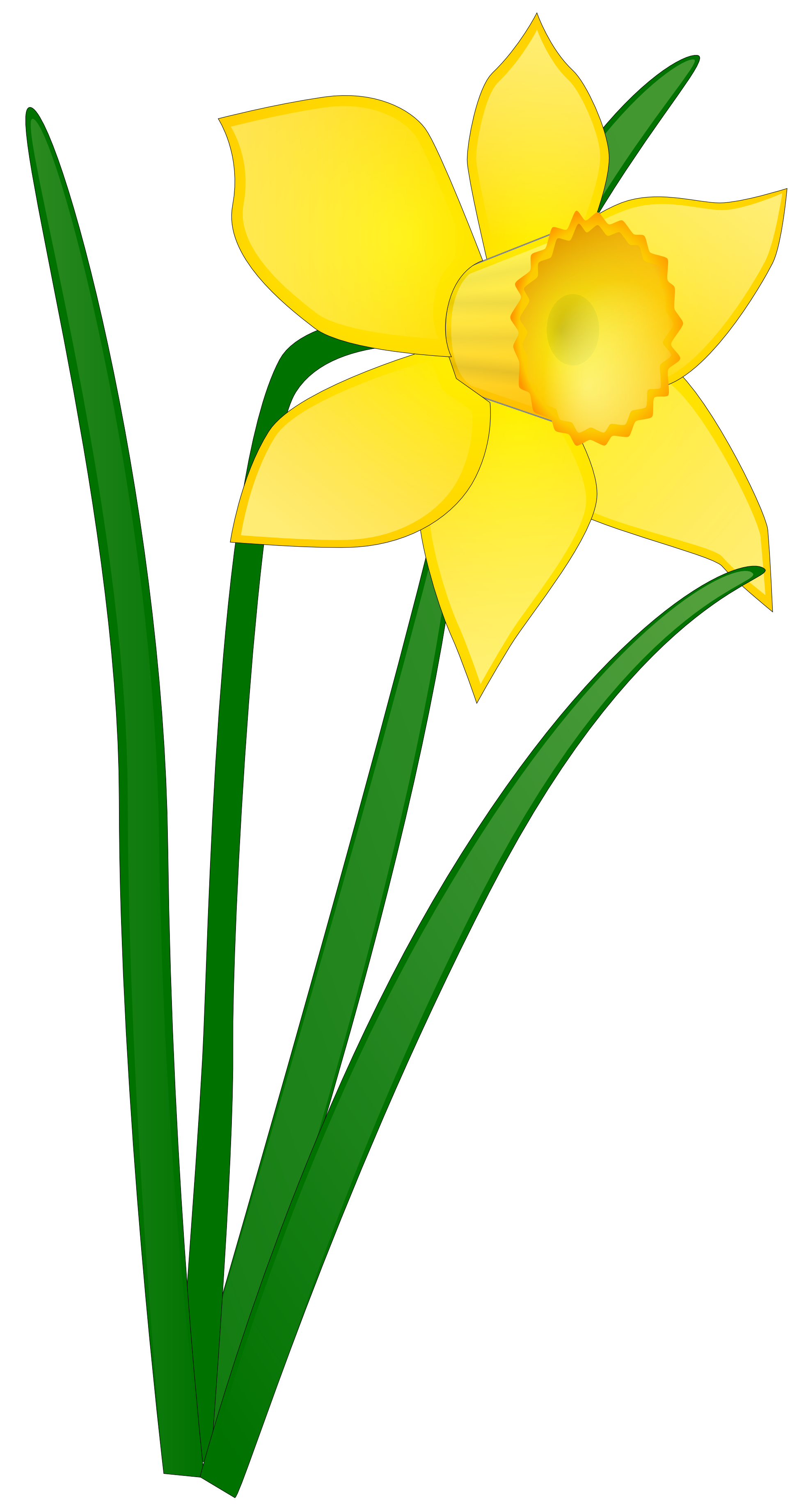 clip royalty free library Bouquet clipart daffodils. Daffodil flower clip art