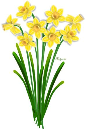 clip black and white download Bouquet clipart daffodils. Transparent .