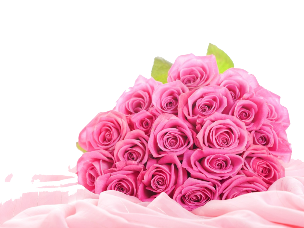 black and white download Pink roses flowers png. Bouquet clipart may flower