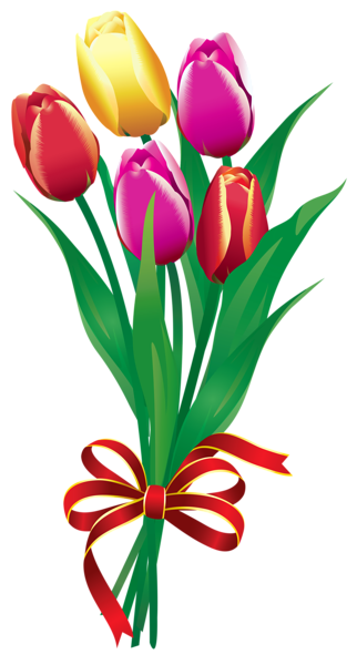 clip art transparent stock Spring tulips png picture. Bouquet clipart tulip