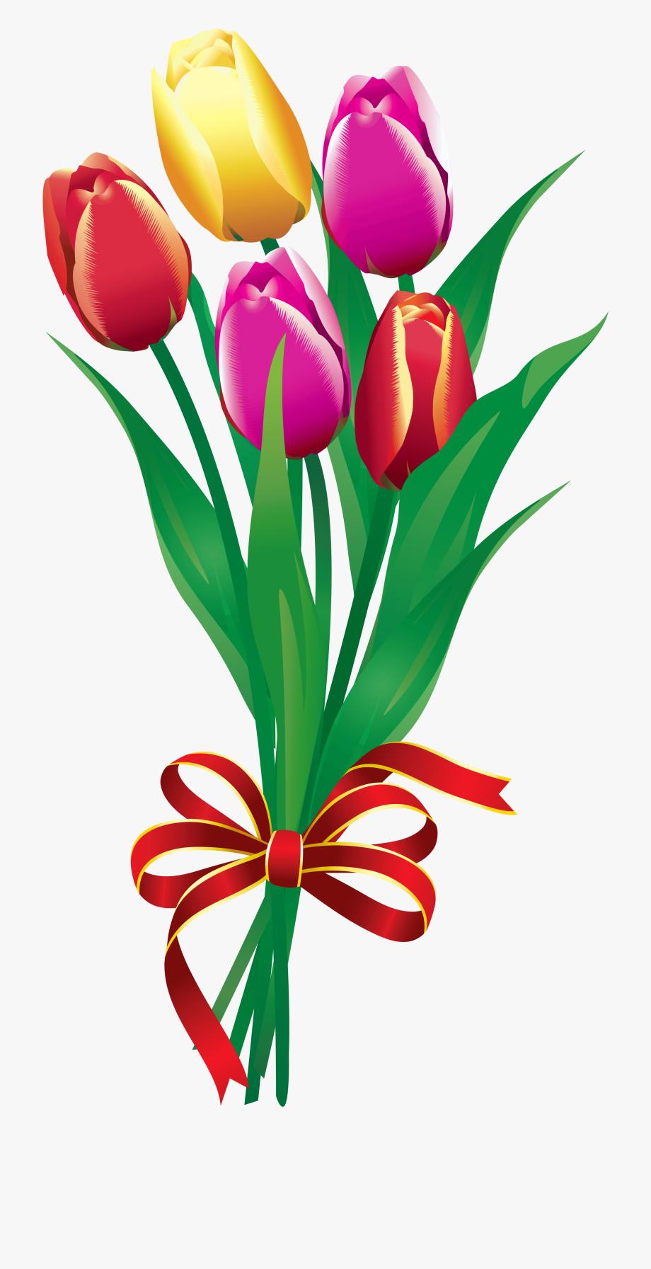 vector Clip art free . Bouquet clipart tulip