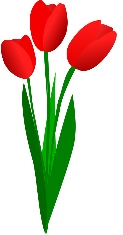 image stock Bouquet clipart tulip. The top best blogs