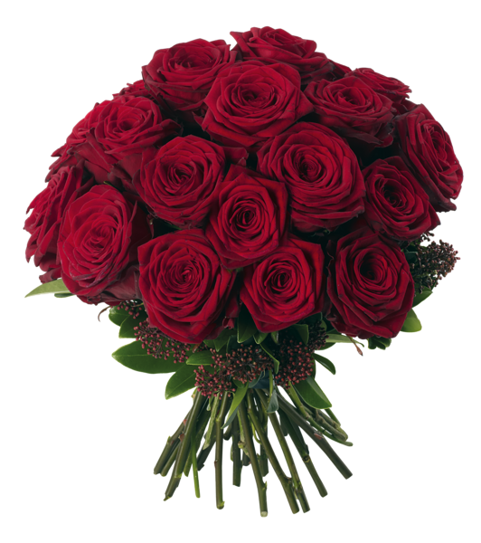 picture library stock Transparent red roses png. Bouquet clipart valentines day rose