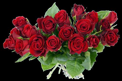 banner freeuse download Rose Bouquet PNG Transparent Image