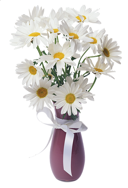svg black and white stock Daisies Transparent Vase Bouquet