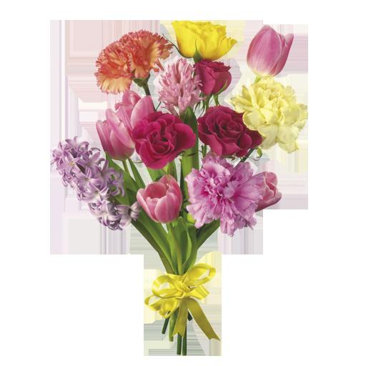 vector freeuse Flower Bouquet