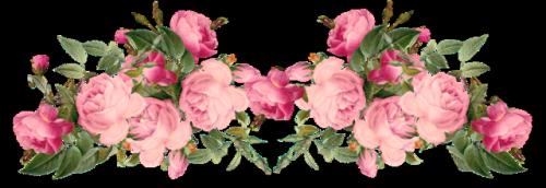 clip art flowers png