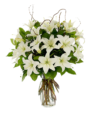 banner stock Elegant Bouquet With White Lilies